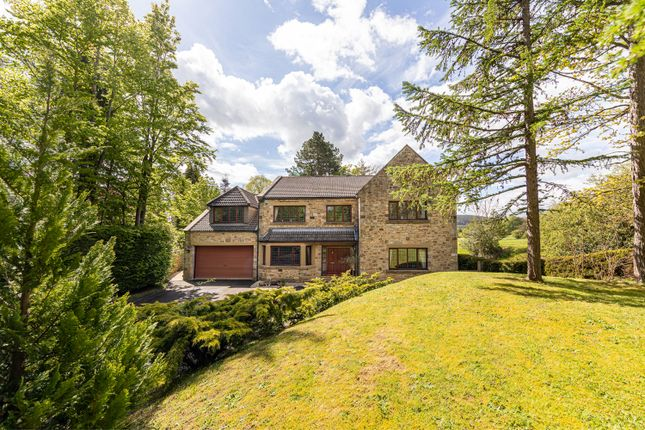 Thumbnail Detached house for sale in Millbank House, Slaley Road, Riding Mill, Northumberland