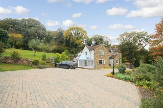 Thumbnail Detached house for sale in Lea Bailey Hill, Ross-On-Wye