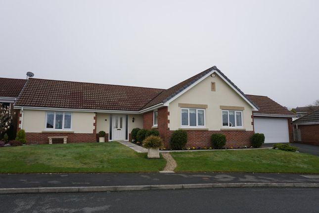 Thumbnail Detached bungalow for sale in Ffordd Werdd, Gorslas, Llanelli