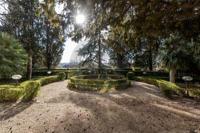 Garden of Via Montalbano, Florence City, Florence, Tuscany, Italy