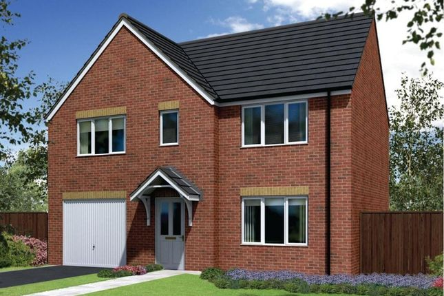"Thumbnail Detached house for sale in ""The Winster"" at Lyne Hill Lane, Penkridge, Stafford"