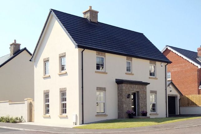 Thumbnail Detached house for sale in Tullynagardy Avenue, Newtownards