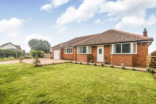 Thumbnail Detached bungalow for sale in Blackdown View, Henlade, Taunton