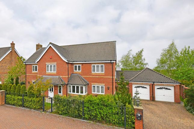Thumbnail Detached house for sale in Folkwood Grove, Sheffield