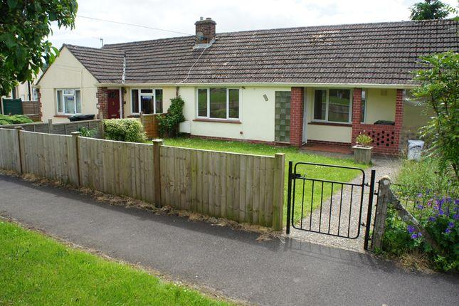 2 bed bungalow to rent in Gerrards Green, Beaminster