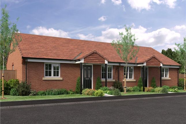 "Thumbnail Bungalow for sale in ""The Bede- Semi Detached"" at Buttercup Gardens, Blyth"