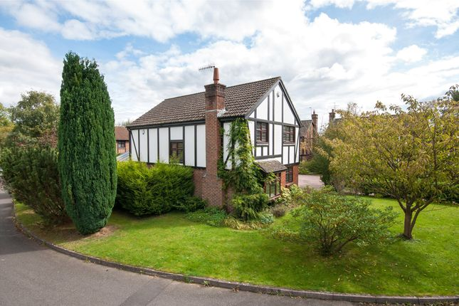 Thumbnail Detached house for sale in Russet Way, North Holmwood, Dorking, Surrey