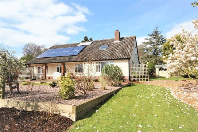 Thumbnail Detached bungalow for sale in Quarry House Lane, Market Drayton