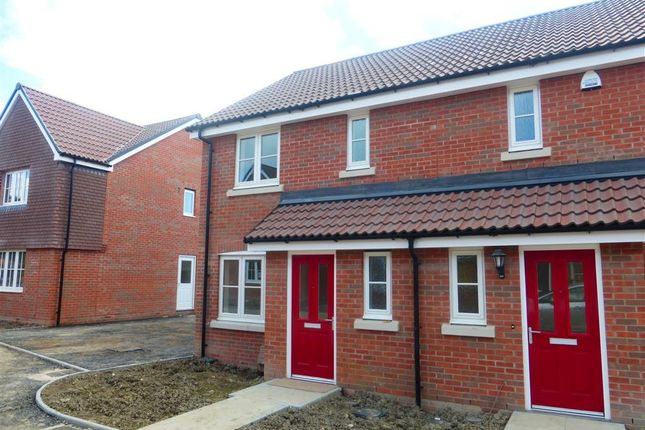 Thumbnail Property to rent in Anstee Road, Shaftesbury