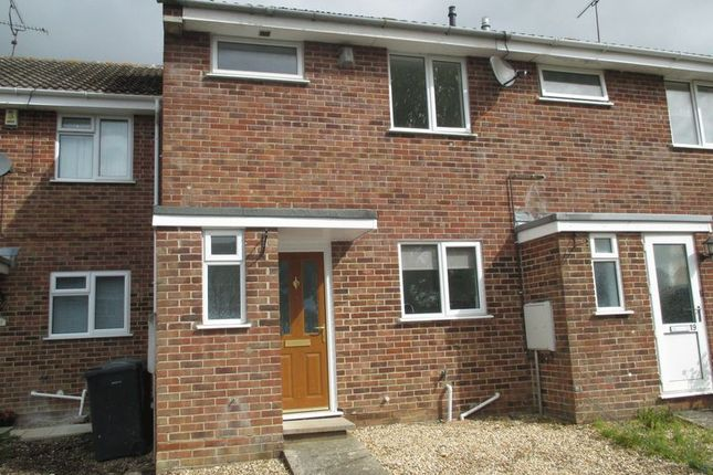 Thumbnail Terraced house to rent in Romsey Road, Yeovil