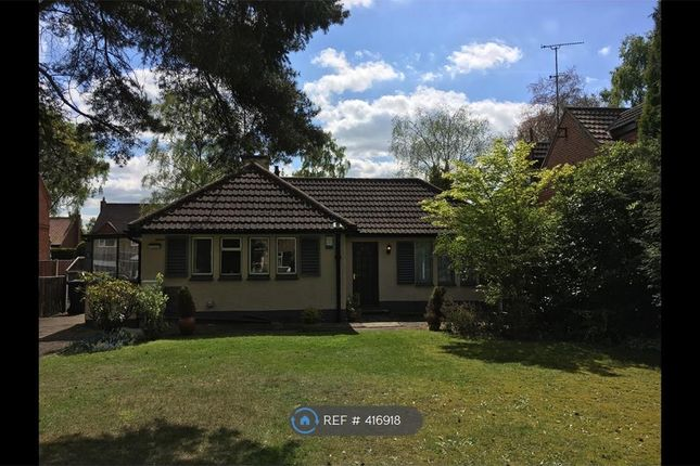 Thumbnail Bungalow to rent in Hatchell Drive, Doncaster