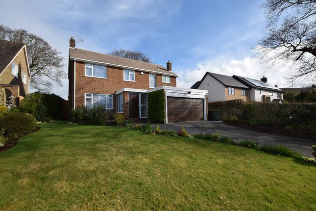 Thumbnail Detached house to rent in Montpelier, Quarndon, Derby