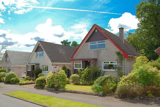 Thumbnail Detached house to rent in Duchess Drive, Helensburgh