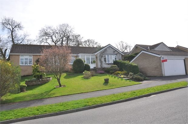 Thumbnail Detached bungalow for sale in Bishopton Way, Hexham, Northumberland.