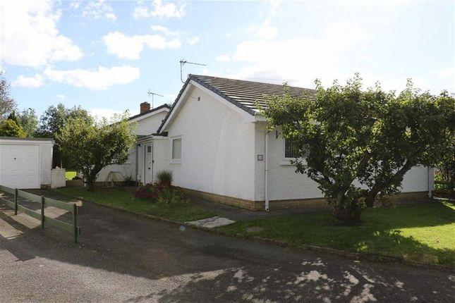4 bed bungalow for sale in Ger Y Llan, Aberystwyth, Ceredigion
