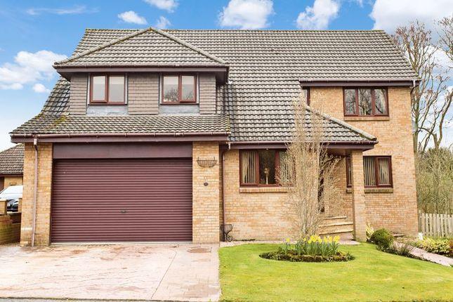 Thumbnail Detached house for sale in Honeyman Crescent, Lanark
