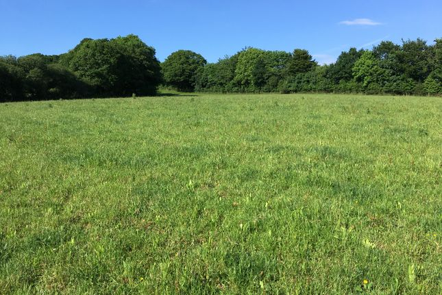 Thumbnail Land for sale in Botus Fleming, Saltash