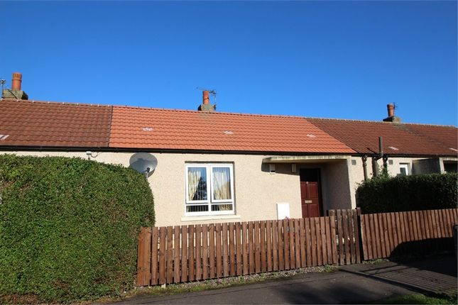 Thumbnail Terraced bungalow for sale in Holly Place, Kirkcaldy, Fife
