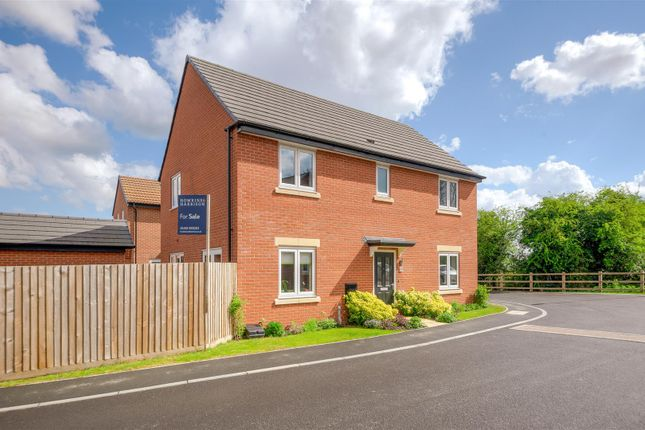 Thumbnail Detached house for sale in Hawthorn Grove, Sapcote, Leicester