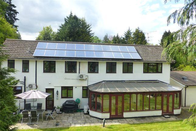 Thumbnail Detached house for sale in Deepdene Avenue, Dorking, Surrey