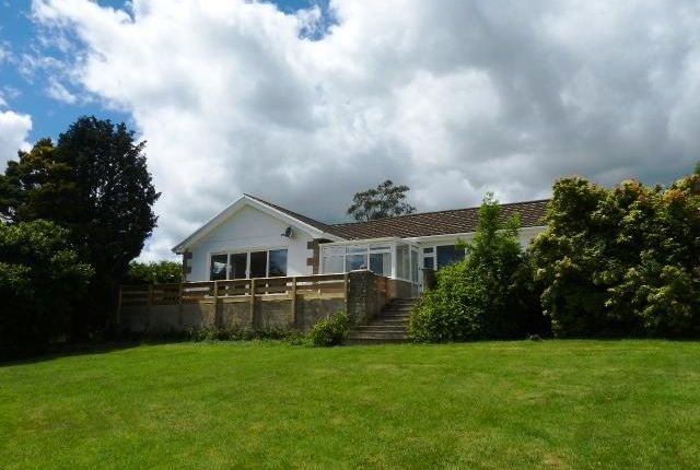 Thumbnail Detached bungalow for sale in Peppers Green, Robeston Wathen, Narberth, Pembrokeshire