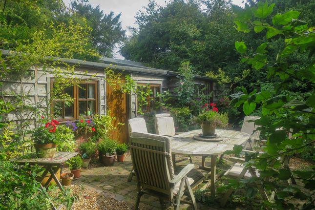 Thumbnail Cottage to rent in Bramdean, Alresford