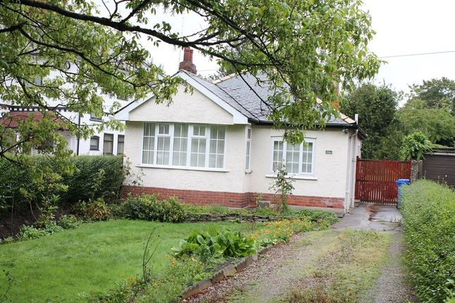 Thumbnail Property to rent in Eppleworth Road, Cottingham