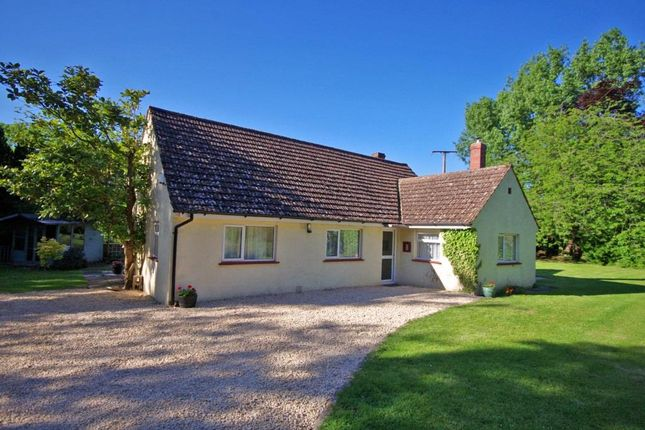 Thumbnail Detached bungalow for sale in Nutstock, Lower North Wraxall, Chippenham, Wiltshire