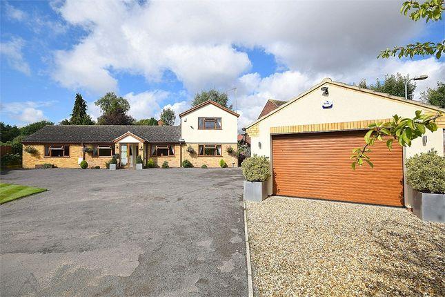 Thumbnail Detached house for sale in Bailey Brooks Lane, Roade, Northampton