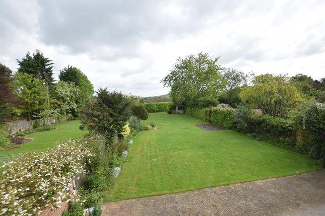 Rear Garden From Window