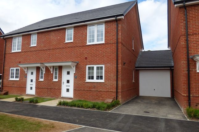 Thumbnail Semi-detached house to rent in Upperton Grove, Littlehampton