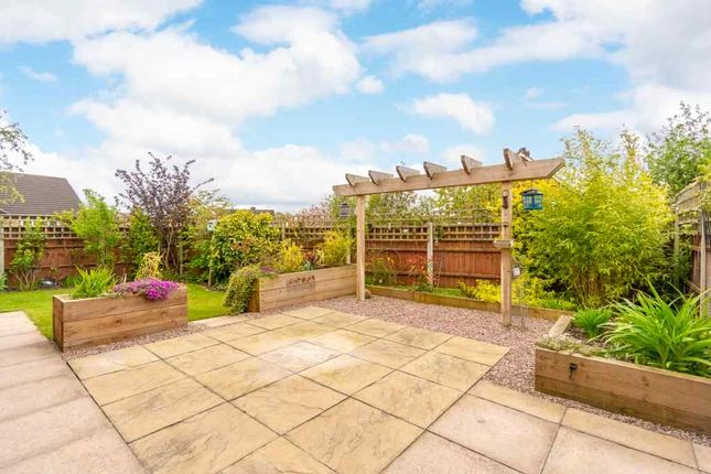 Thumbnail Detached bungalow for sale in Pump Road, Bomere Heath, Shrewsbury