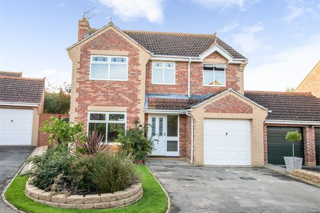 Thumbnail Detached house for sale in Henley Way, Ely, Cambridgeshire