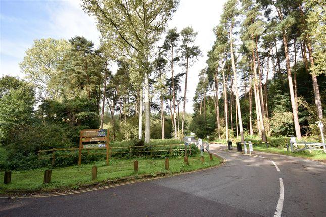 Thumbnail Semi-detached bungalow for sale in Emu Close, Heath And Reach, Leighton Buzzard