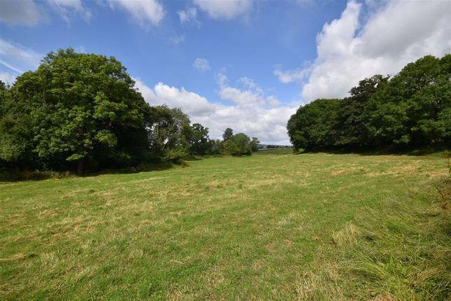 Mill Field, Ledbury, Herefordshire HR8