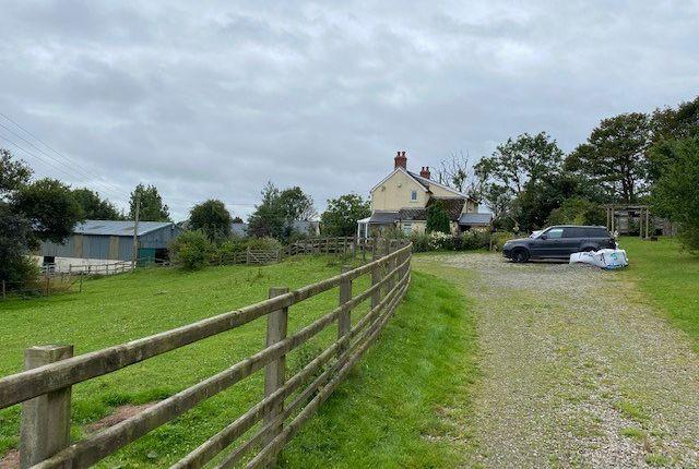 Thumbnail Land for sale in Cross Inn, Nr New Quay