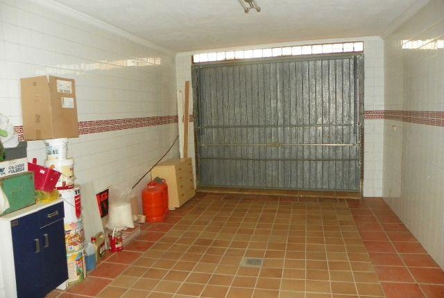 100_4204 of Spain, Málaga, Guaro