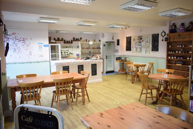 Thumbnail Property to rent in Cafe, Great Torrington, Devon