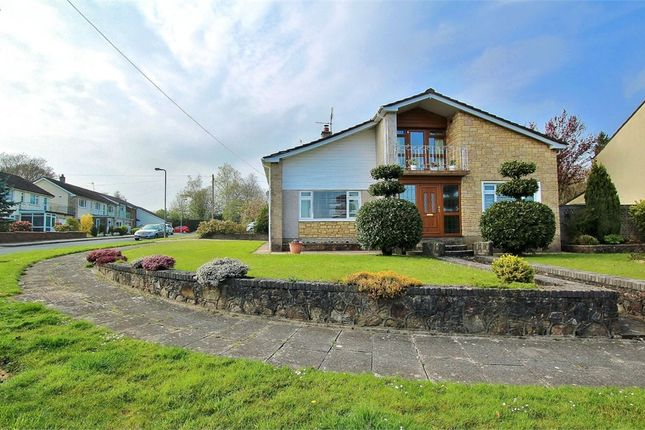 Thumbnail Detached house for sale in Cotswold Avenue, Lisvane, Cardiff