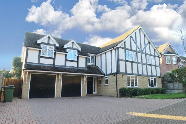 Thumbnail Detached house for sale in Norsey Close, Billericay
