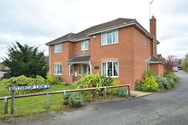 Thumbnail Detached house for sale in Buttercup Lane, West Lynn, King's Lynn