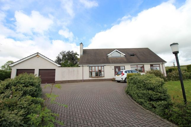 Thumbnail Detached house for sale in Pond Park Road, Lisburn