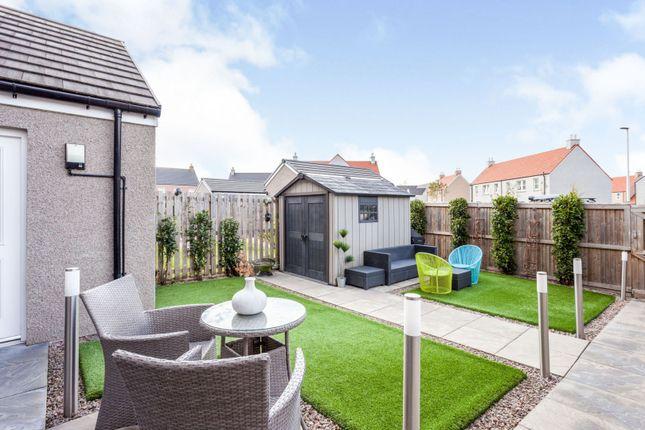Garden of Wellington Green, Aberdeen AB12