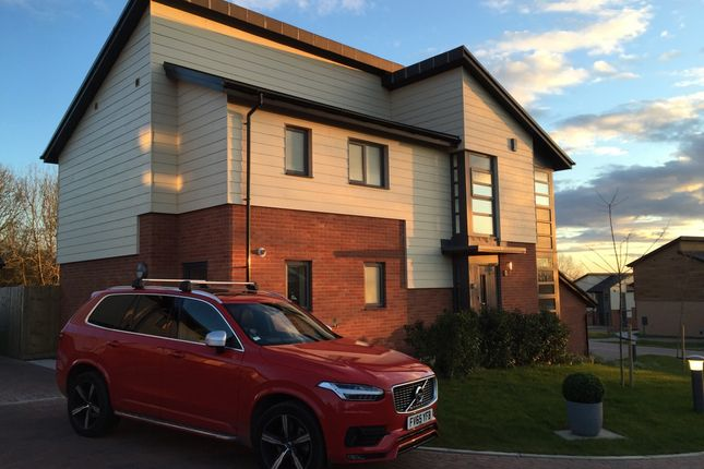 Thumbnail Detached house for sale in Albion Close, Lincoln, Lincolnshire