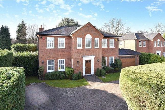 Thumbnail Detached house to rent in Wood End Close, Farnham Common, Slough