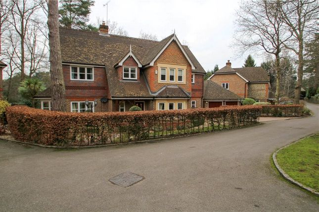 Thumbnail Detached house for sale in The Spinney, Camberley, Surrey