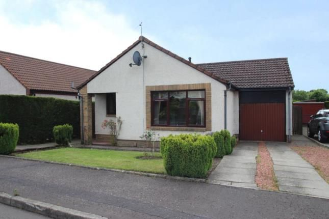 Thumbnail Bungalow for sale in Millar Place, Falkirk, Stirlingshire