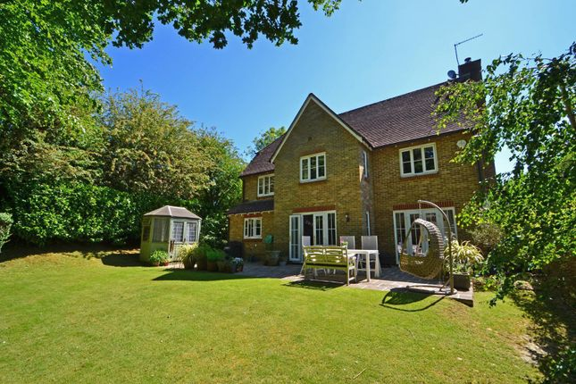 Garden of Backing Onto Woodland, Ashington, West Sussex RH20