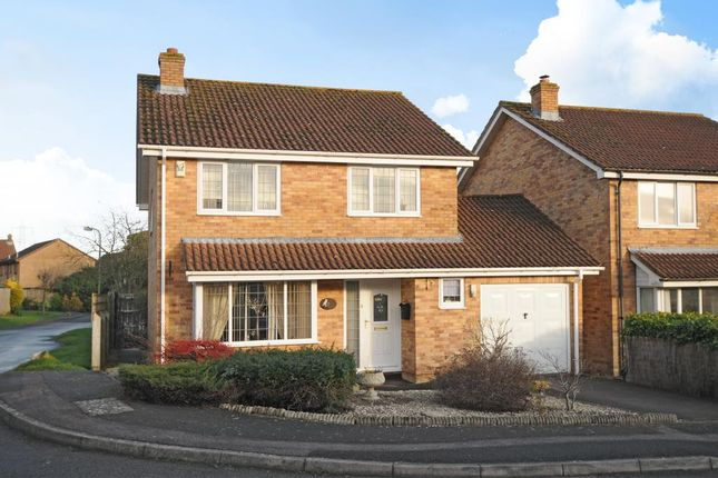 Thumbnail Detached house to rent in Botley, Oxford