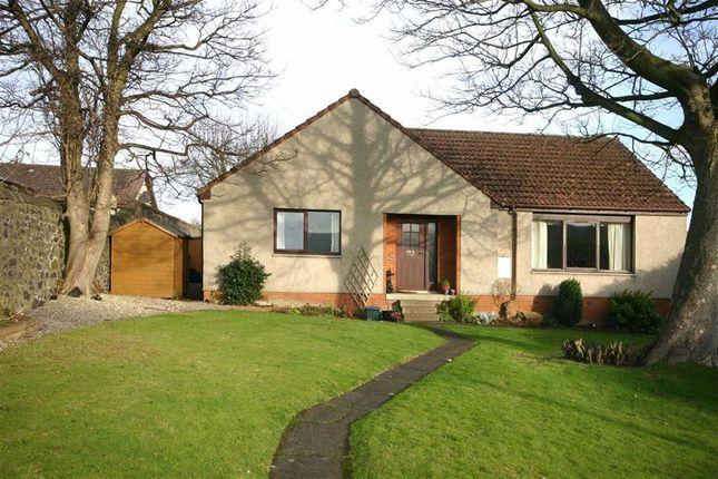 Thumbnail Detached bungalow for sale in 29B, Cupar Road, Auchtermuchty, Fife